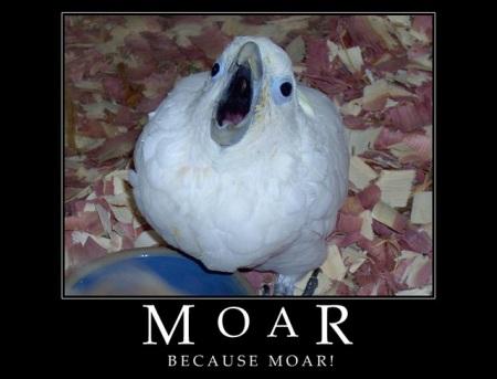 MOAR!!!!